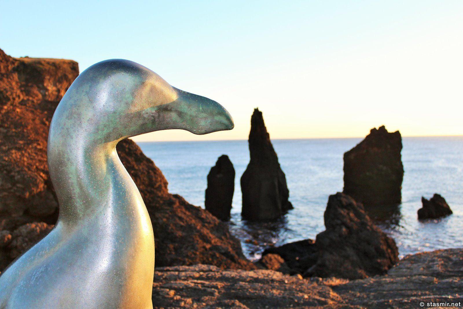 Статуя бескрылой гагарки, Полуостров Рейкьянес, Geirfugl. Great Auk, Бескрылая гагарка, Pinguinus, Gare-fowl, alca, arponaz, автор Тодд МакГрейн, фото Стасмир, Photo Stasmir