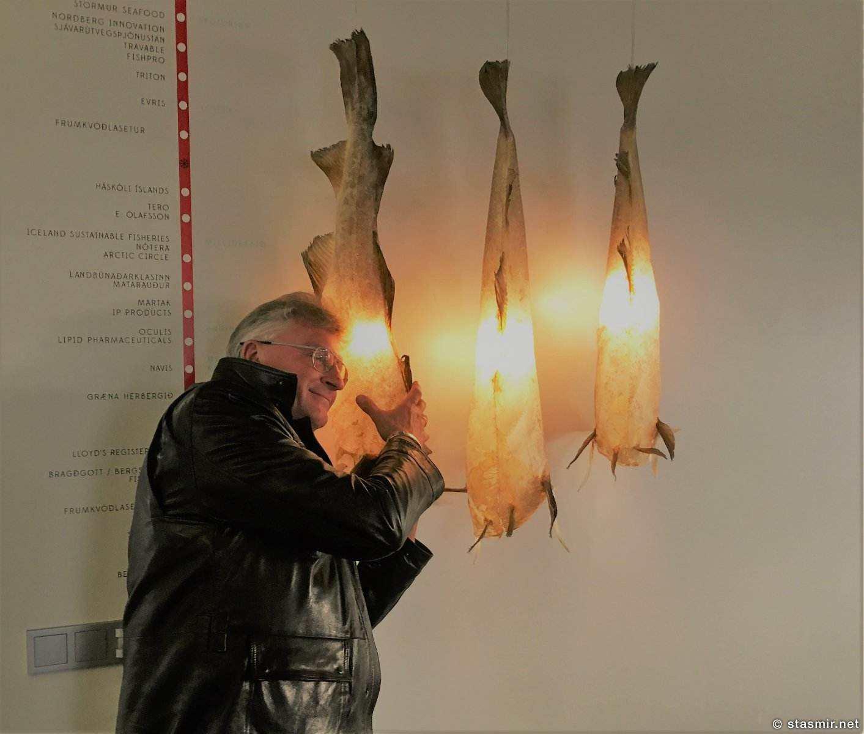 cod-skin-lamps, Лампы из тресковой кожи, фото Стасмир, Photo Stasmir