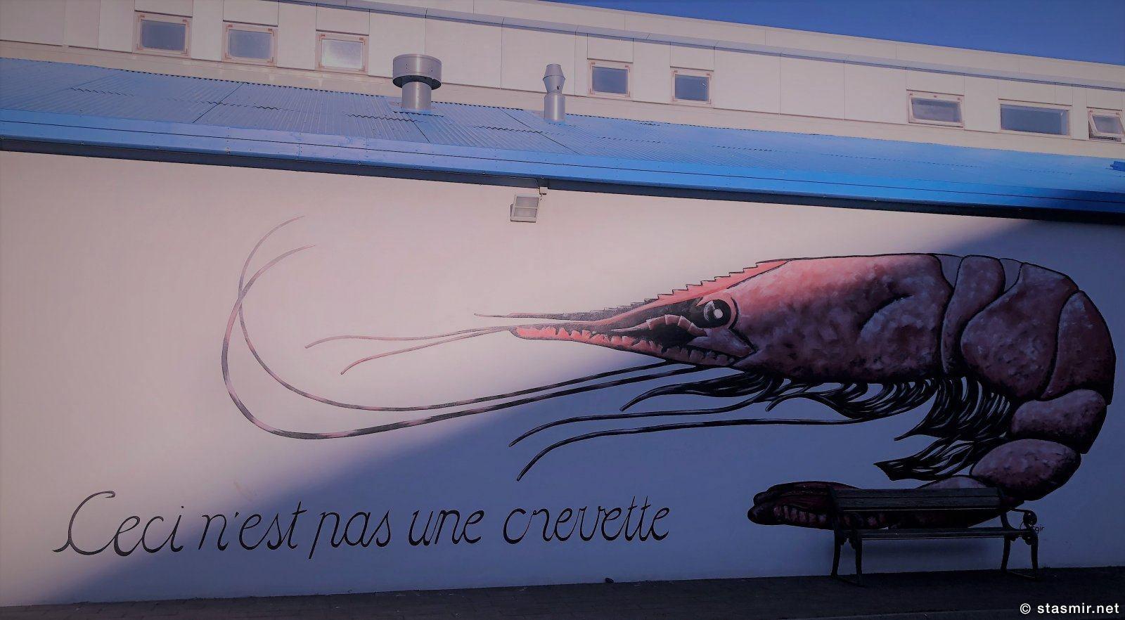 crevette, Это не креветка. Хужожественная роспись стены рыбзавода, Скагафьердюр, фото Стасмир, photo Stasmir