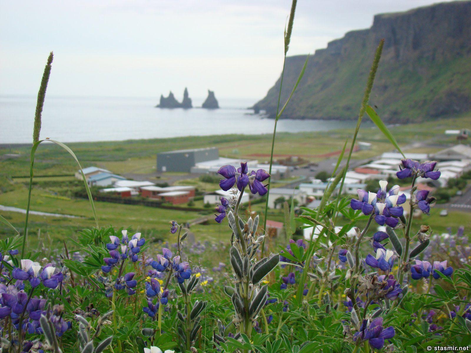 Рейнисдрангар - вид из Вика, Южный Берег Исландии, фото Стасмир, photo Stasmir