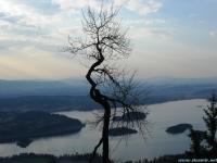 tyrefjorden in spring
