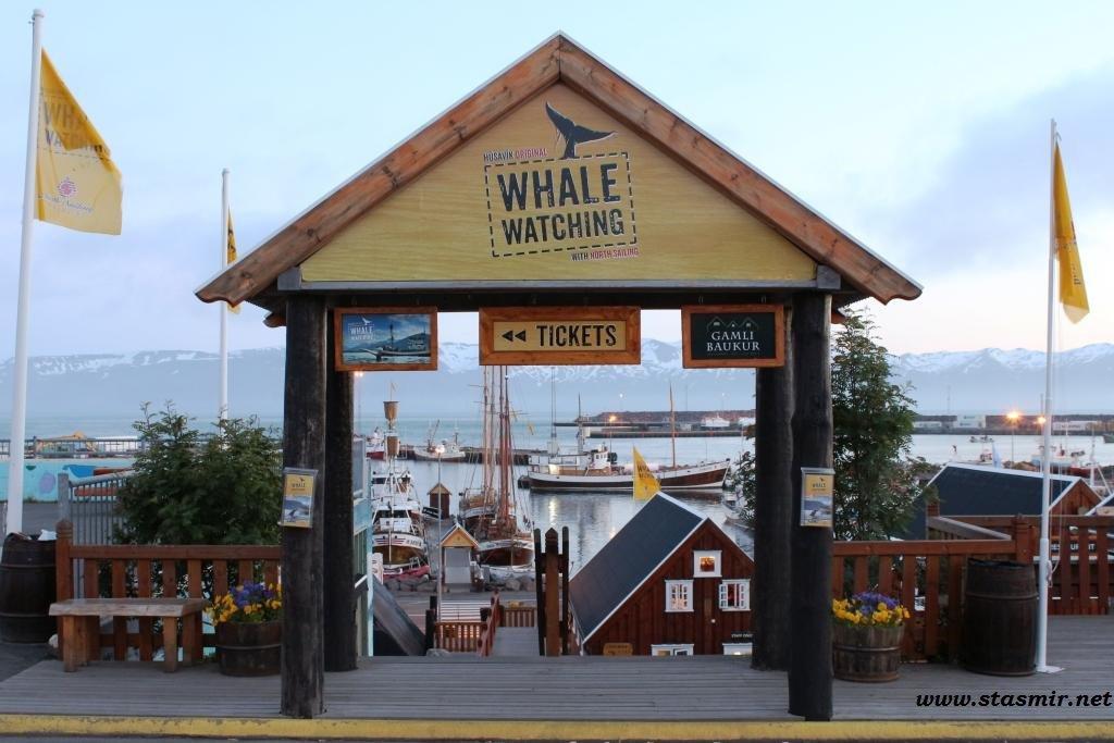 whalegate