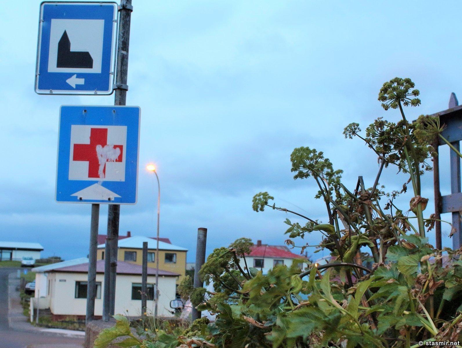 Стиккисхоульмюр, Stykkisholmur, Западная Исландия, дорожные знаки, заросли дударя, фото Стасмир, photo Stasmir