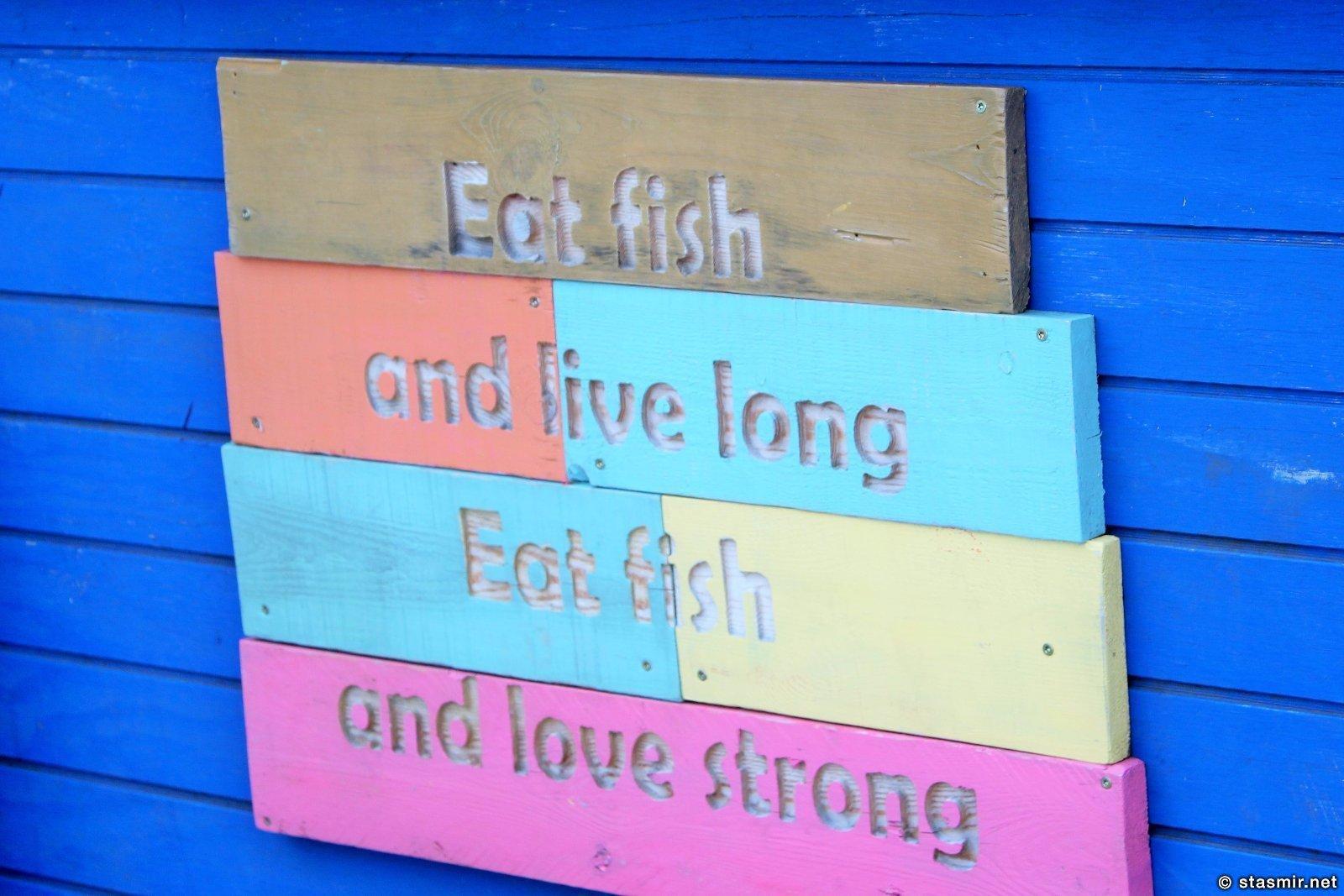 Гриндавик, Рейкьянес, Исландия, Eat fish live long, eat fish love strong, Photo Stasmir, Фото Стасмир