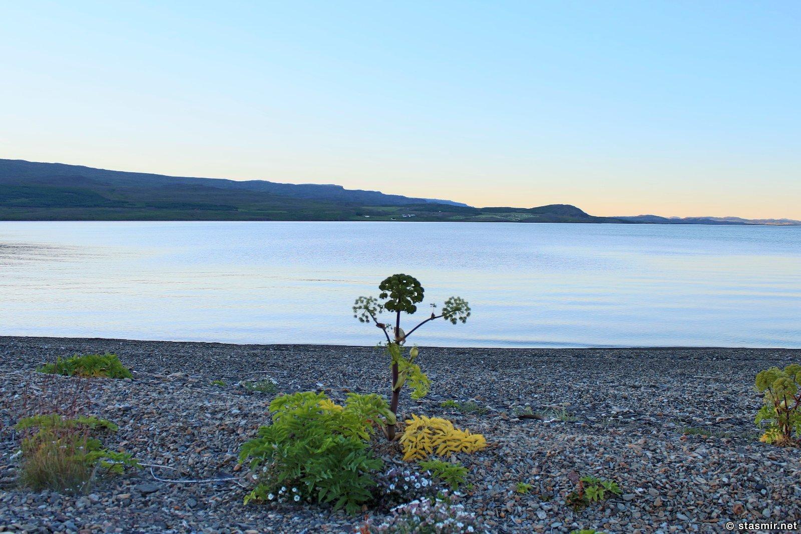 дудуарь на озере Лагарфлйот рядом с фермой Mjóanes, размещение в сельских домиках в Исландии, фото Стасмир, photo Stasmir, Восточная Исландия