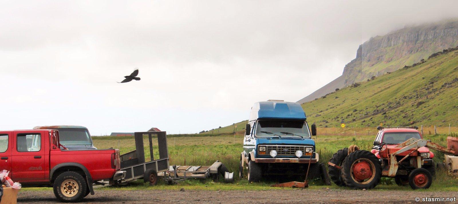 Черный ворон над Южным Берегом Исландии, фото Стасмир, photo Stasmir, ресторан Gamla Fjósið