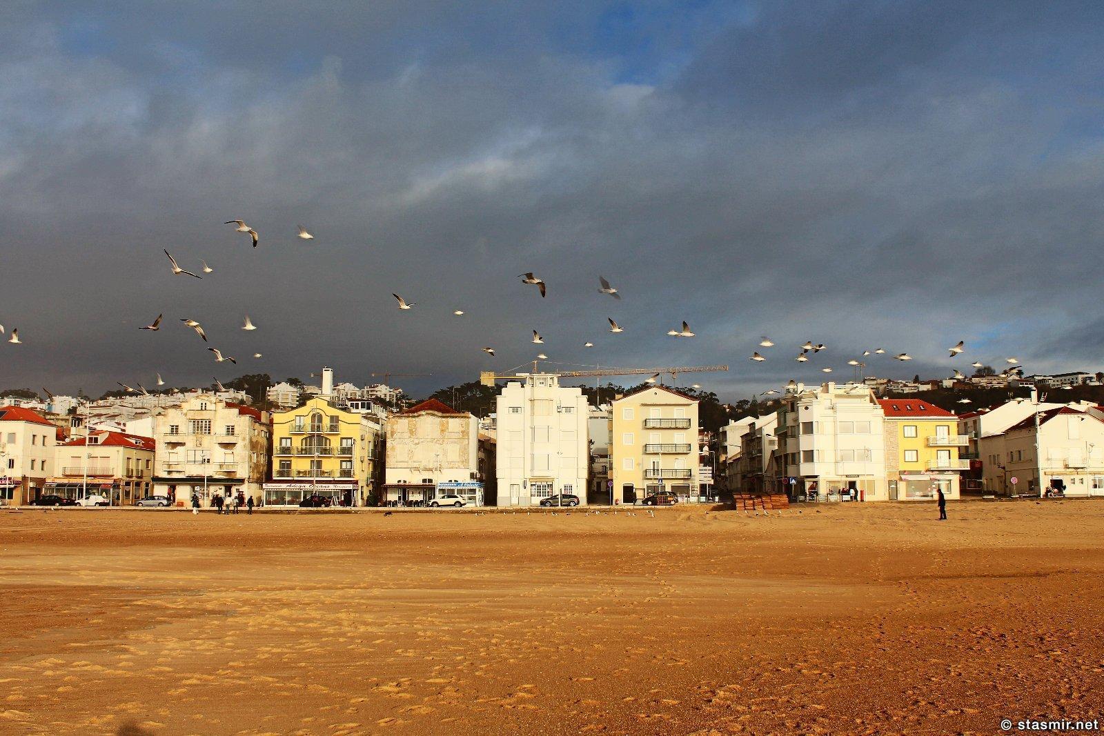 Назаре в центральной Португалии: городе песка и чаек, фото Стасмир, Photo Stasmir