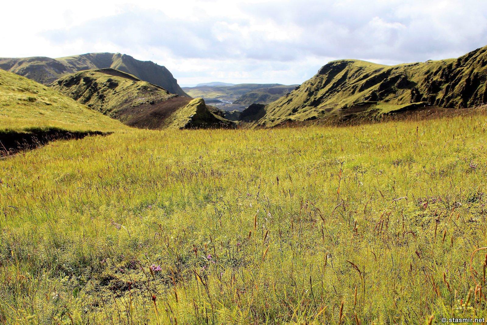 зеленые луга по маршруту Такгил, Такгиль, Þakgíl, фото Стасмир, photo Stasmir