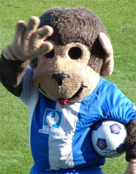 hangus-hartlepool-mascot