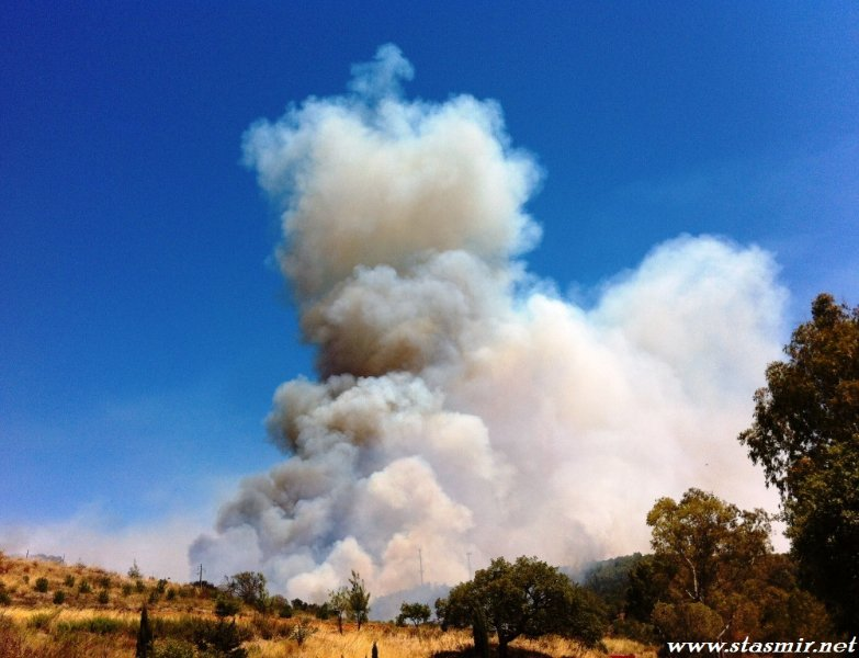 wildfire bensafrim