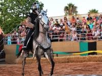 black-rider