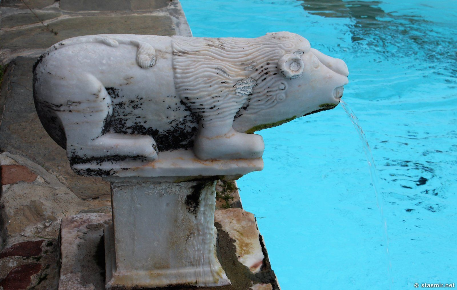 каменный лев, провинция Алентежу, фото Стасмир, photo Stasmir