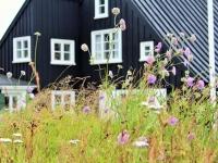 Хусид, Эйрабакки, 1765 год, Húsið, Eyrabakki, Южный Берег, самый старый дом в Исландии, Photo Stasmir