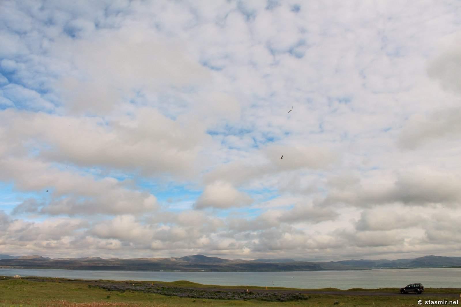 Разлив Белой Реки, Южный Берег, Исландия