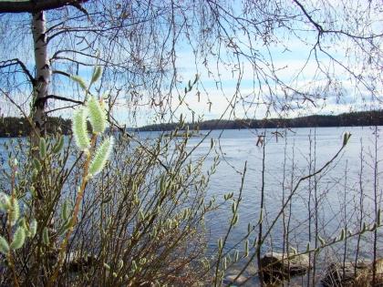 Водный глади Финляндии в провинции Южное Сево, фото Стасмир, Photo Stasmir