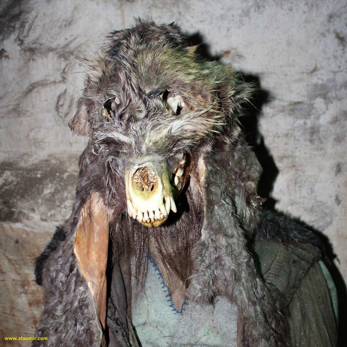 Великий Шаман из Боргарнеса, фото Стасмир, photo Stasmir