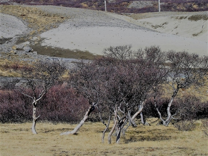 дорога на водопад Глимюр, Глимур, Исландия, фото Стасмир, Photo Stasmir