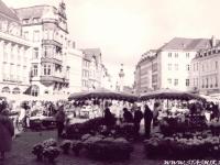 Grinder Von Trier