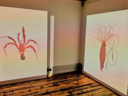 рисунки Грёндаля в доме-музее на улице Фишерсунд в Рейкьявике, фото Стасмир, photo Stasmir