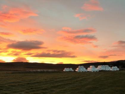 Ферма Нес, Рейкхольт, фото Стасмир, photo Stasmir, Серебряное кольцо Исландии