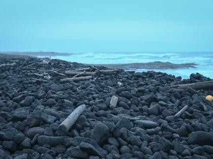 прибой и реки - бревна из сибирских рек - на южном берегу Исландии, фото Стасмир, photo Stasmir