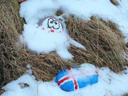 исландский флаг на снегу, фото Стасмир, photo Stasmir