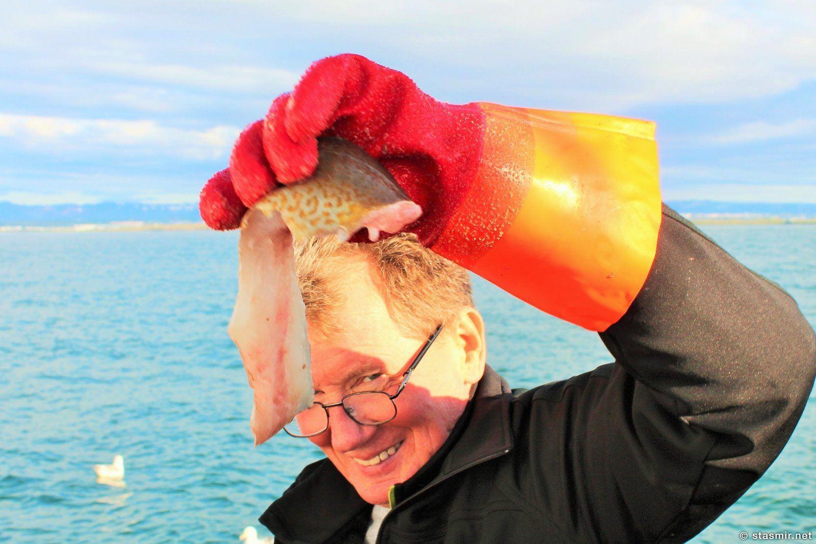 исландская треска, морская рыбалка из Рейкьявика, фото Стасмир, photo Stasmir