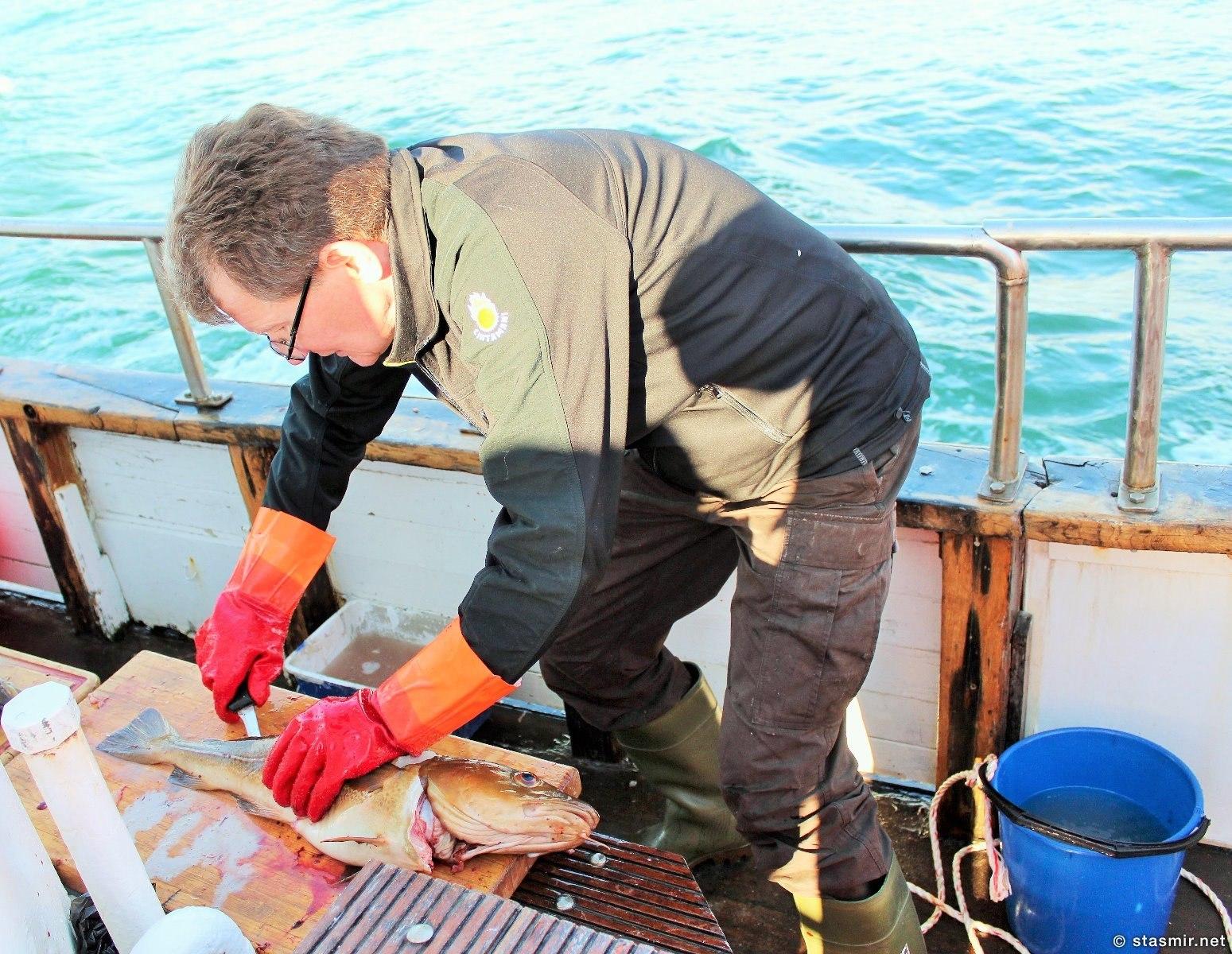 Сигги снимает филейку: исландцы не едят голов и жабр, фото Стасмир, photo Stasmir
