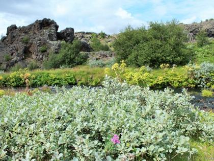 Gjáin, магическая страна водопадов Гйауин, самое красивое место в Исландии, фото Стасмир, photo Stasmir, Landmannalaugar, Ландманналёйгар, базальтовые колонны в Исландии