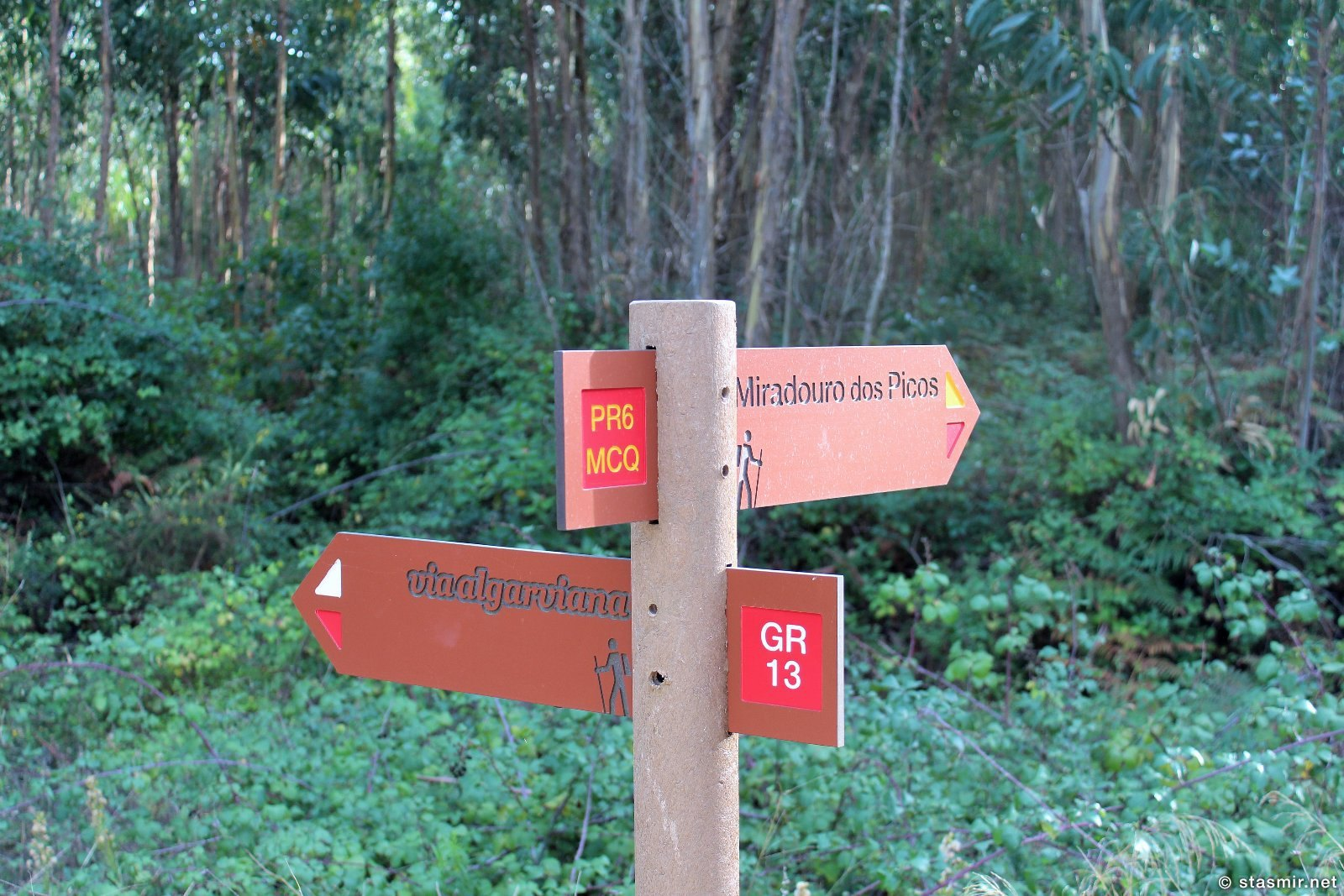указатель на обозревательную площадку Пикуш, Miradouro dos Picos, гриб на пешей тропе вокруг Мармелете, Альгарве, фото Стасмир, photo Stasmir, Percurso Pedestre de Marmelete, Моншик, Мармелете