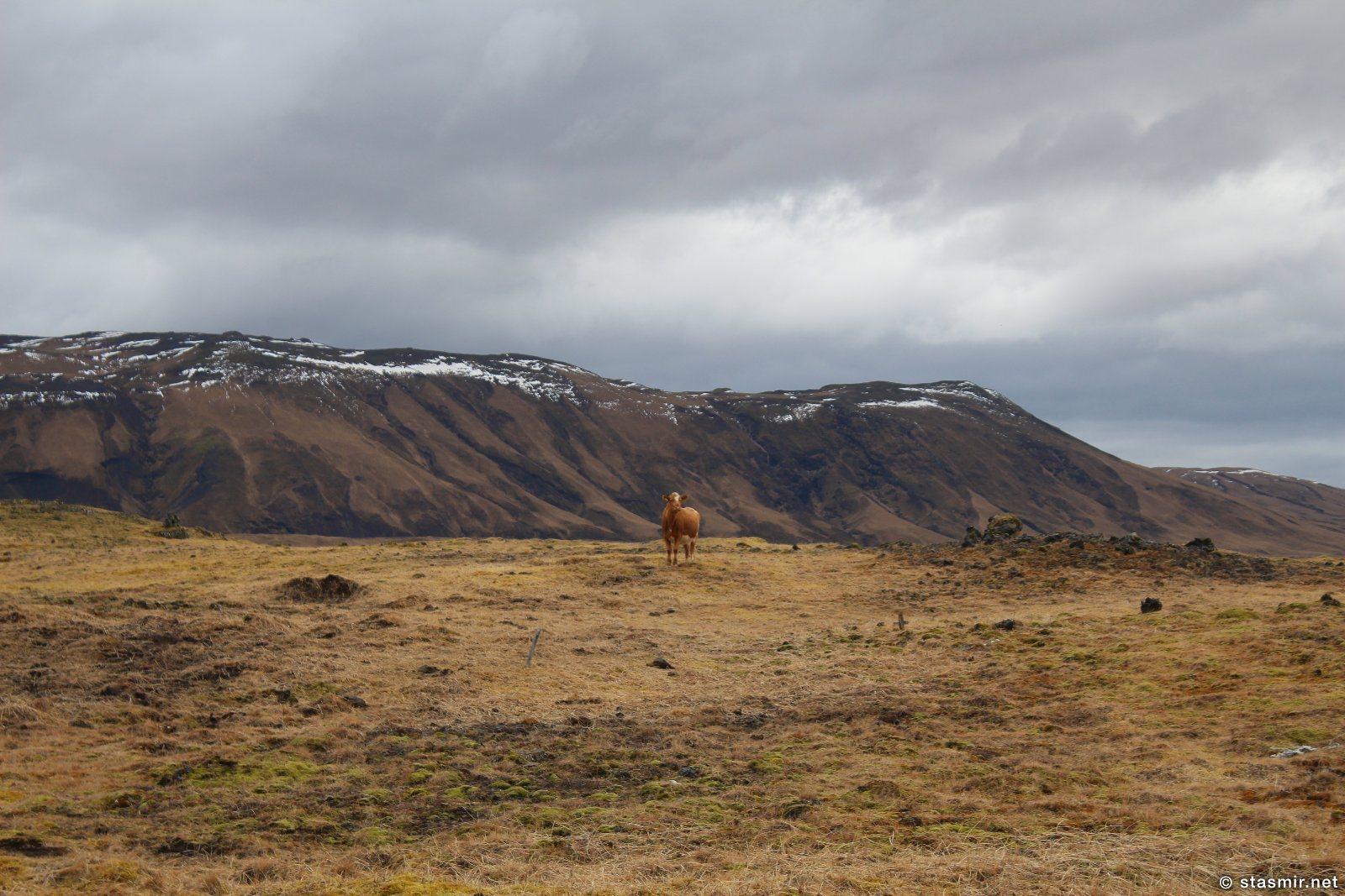 исландсике пейзажи в районе Fljótshlíð, Южная Исландия, фото Стасмир, photo Stasmir