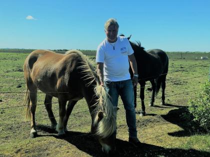 horses, Лошадки исландской породы, фото Стасмир, photo Stasmir