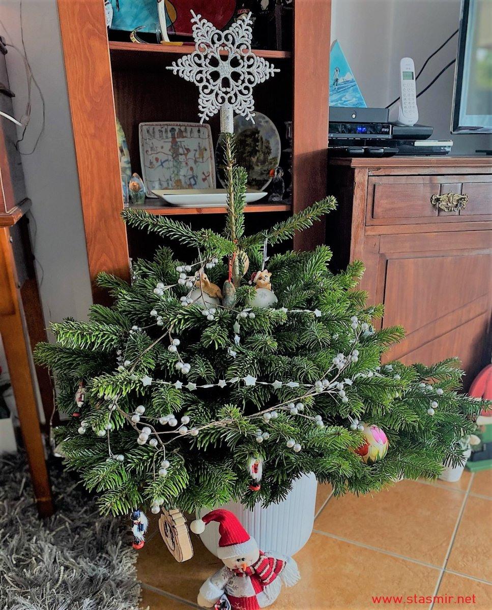 JOL - рождестенская ёлка. Фото Стасмир. Photo Stasmir