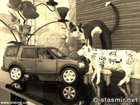 Ведровер, Диско-III, священная корова, wholy cow, Landrover Discoveryy III, фото Стасмир, photo Stasmir