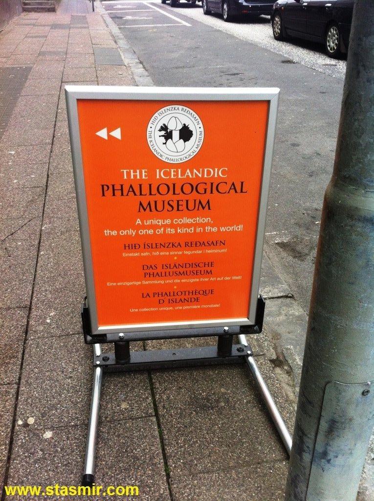 Фаллологический музей, Icelandic Phallological Museum, музей пенисов в Рейкьявике, фото Стасмир, photo Stasmir
