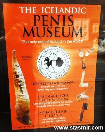Penis Museum, Icelandic Phallological Museum, музей пенисов в Рейкьявике, фото Стасмир, photo Stasmir, Из всех наук самая важная для нас — фаллология!, музей пенисов, пенистый музей, Рейкьявик, Исландия, фалеоллогический музей, музей пениса, пениса музей, пенис по-исландск, Penis Museum, Береги свой хой!