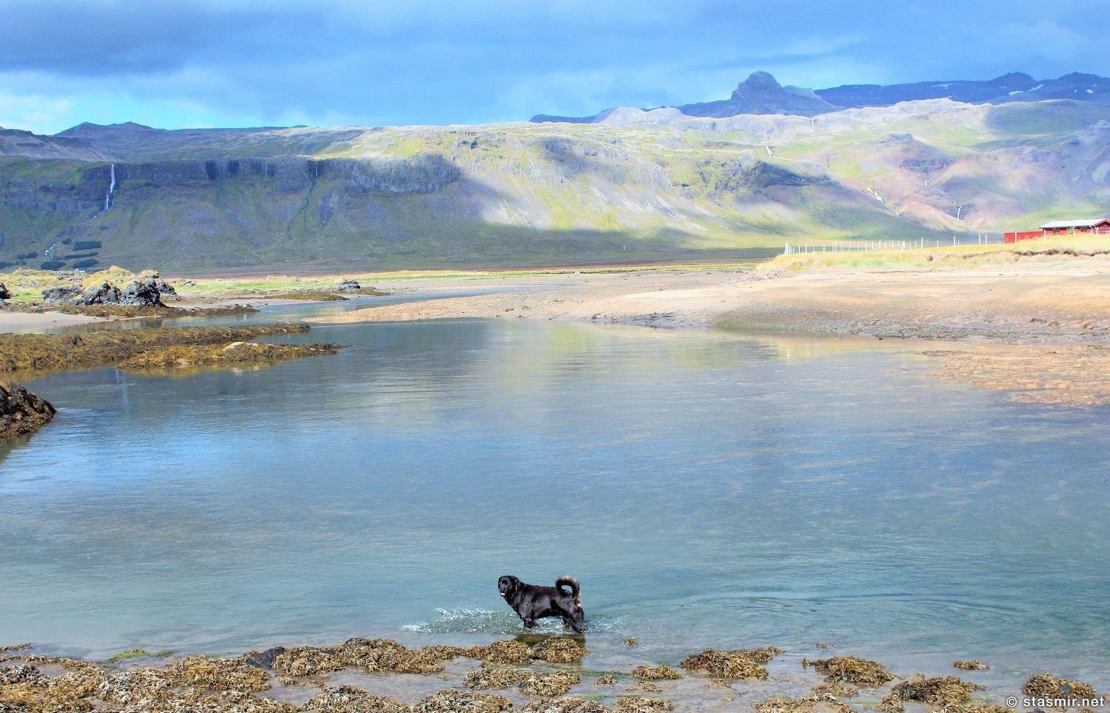 Вид из отеля Buðir на полуострове Снайфедльснес, Западная Исландия, фото Стасмир, photo Stasmir