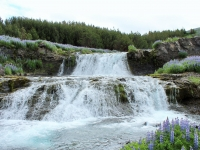 réttir í hvalfirði, Китовый фьорд, водопады, Западная Исландия, окрестности Рейкьявика, Photo Stasmir