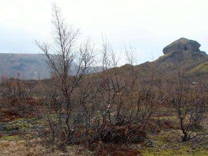 Пешие маршруты на базе Тоурсмёрк, фото Стасмир, Торсморк, Þórsmörk, фото Стасмир, photo Stasmir