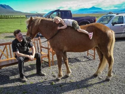 исландская лошадка, фото Стасмир, photo Stasmir
