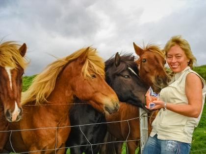 Киты и кони. День, заполненный «экшэном»: морская и конная прогулки