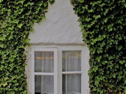 окна Рейкьявика из серии Летняя Исландия, фото Стасмир, photo Stasmir