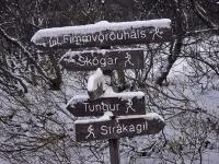 Указатели маршрутов, зима