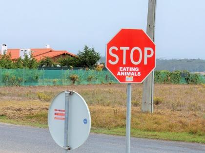 Альджезур, Португалия, знаки, хватит есть животных!, Photo Stasmir, Фото Стасмир