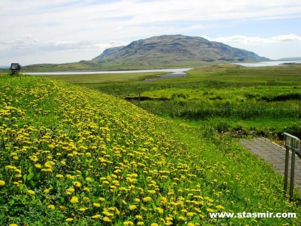 Исландия, Скаухольт