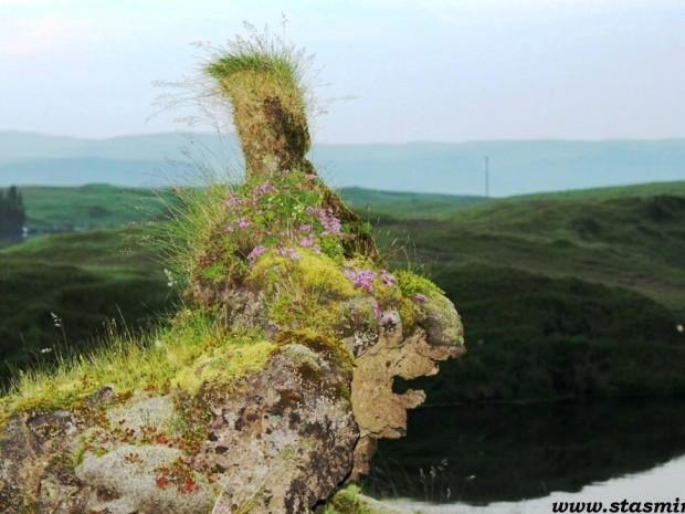 Исландия, виды