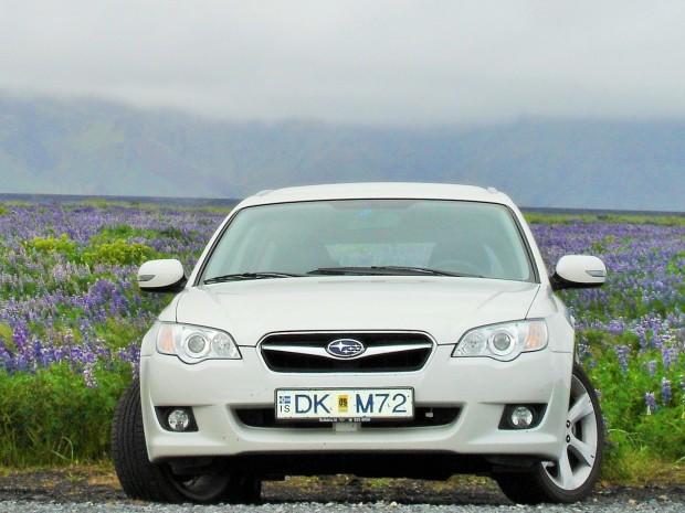 Субару в полях люпинов, Исландия