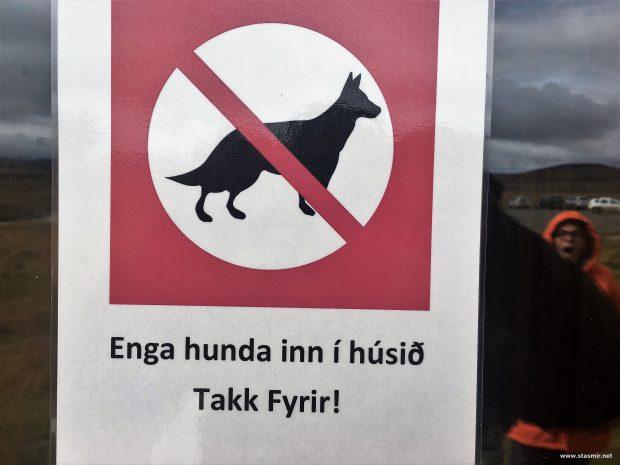Вывеска С собаками негоже. Кедлингарфьёдль в Исландии. Фото Стасмир. Photo Stasmir